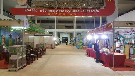 Nhung hinh anh 'nhoi long' tai cac gian hang nong san Hoi cho Tay Bac - Anh 13