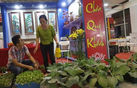 Nhung hinh anh 'nhoi long' tai cac gian hang nong san Hoi cho Tay Bac - Anh 15