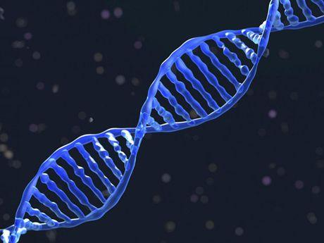Dot pha cong nghe chinh DNA giup chua cac benh nan y - Anh 1