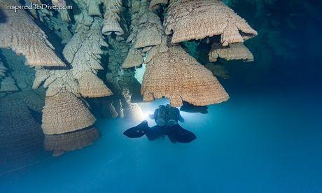 'Chuong dia nguc' trong hang sau 30 m o Mexico - Anh 1