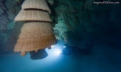 'Chuong dia nguc' trong hang sau 30 m o Mexico - Anh 2