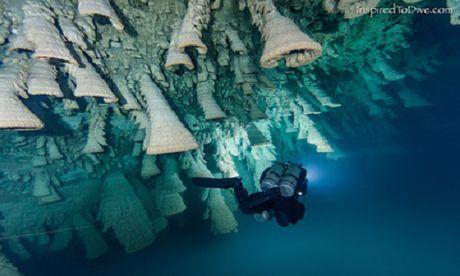'Chuong dia nguc' trong hang sau 30 m o Mexico - Anh 3