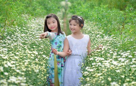 Cuc hoa mi tinh khoi dan loi Dong ve - Anh 10