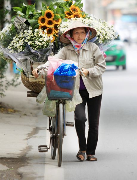 Cuc hoa mi tinh khoi dan loi Dong ve - Anh 11