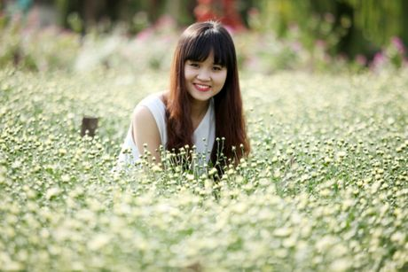Cuc hoa mi tinh khoi dan loi Dong ve - Anh 9