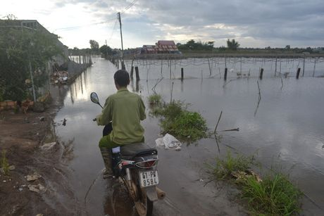 Thuy loi tran nuoc, nguoi dan khon don - Anh 2