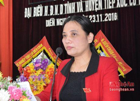 Pho Chu tich HDND tinh Cao Thi Hien tiep xuc cu tri huyen Dien Chau - Anh 1