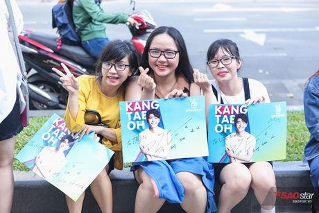 Fan Viet 'nga guc' truoc ve de thuong cua 'Pikachu' Kang Tae Oh - Anh 5