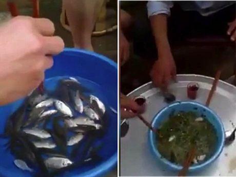 Rung minh voi nhung mon goi song kinh di nhat the gioi - Anh 7