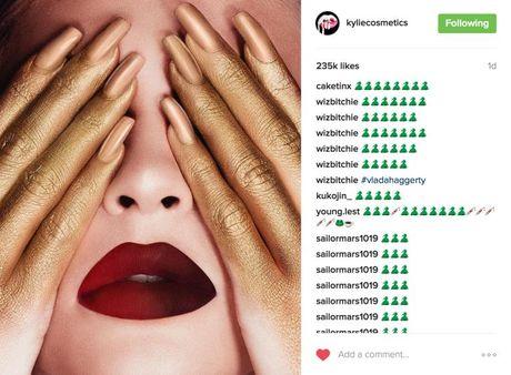 Anh quang cao cua Kylie Jenner bi to an cap ban quyen - Anh 4