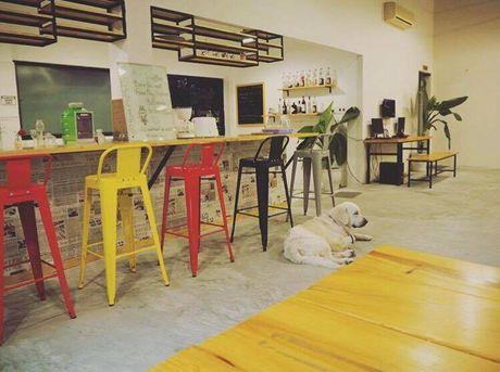 5 hostel phong cach dep tuyet cho khach du lich o Da Nang - Anh 5