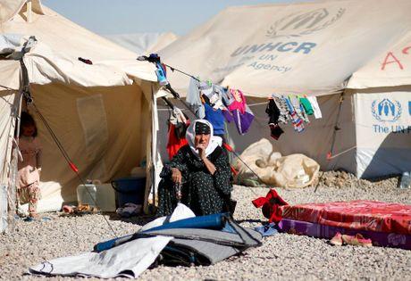 Thieu thon du dieu dan Iraq trong trai ti nan gan Mosul - Anh 17