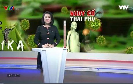 Trien khai cac bien phap dieu tri thai phu nhiem Zika tai TP.Ho Chi Minh - Anh 1