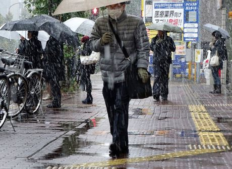 Tokyo sung so vi tuyet roi thang 11 - Anh 9