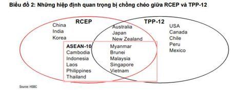 HSBC: Tia hy vong moi cua kinh te the gioi sau TPP - Anh 3