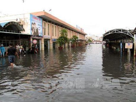 TP Ho Chi Minh ban giai phap cho thoat nuoc do thi - Anh 1