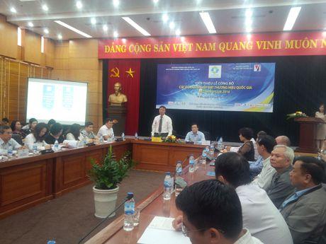 Cong bo 88 doanh nghiep dat Thuong hieu Quoc gia nam 2016 - Anh 1