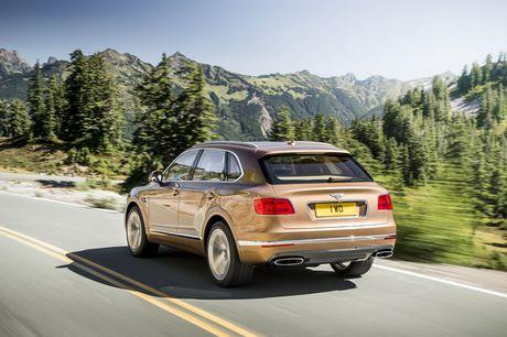 SUV sieu sang Bentley Bentayga bi trieu hoi vi loi an toan - Anh 3