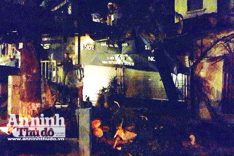 Ha Noi: Cay sau lau nam bat ngo do vao nha dan o Dien Bien Phu - Anh 3