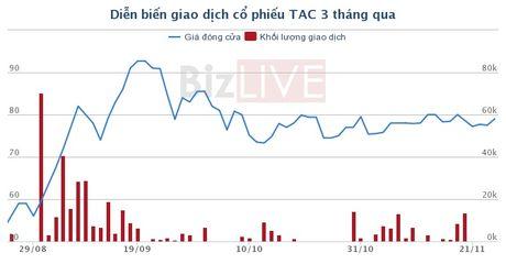 Kido da gom xong 65% co phan Dau Tuong An - Anh 1