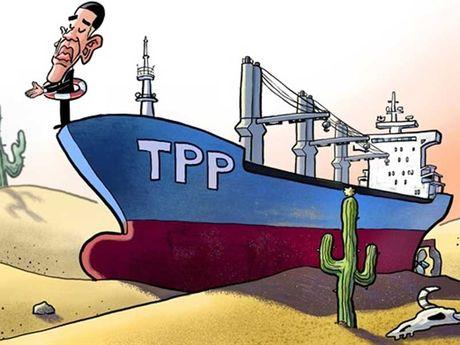 TPP khong phai mon qua cho Bac Kinh - Anh 1