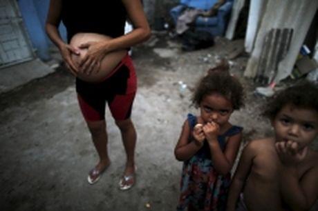 Nghich ly trong chong virus Zika o Brazil - Anh 1