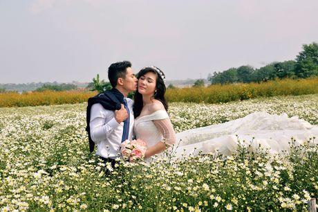 Cuc hoa mi khoe sac trang trong gio lanh dau dong Ha Noi - Anh 6