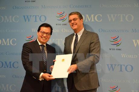 WTO danh gia cao nhung thanh tuu kinh te-xa hoi cua Viet Nam - Anh 1
