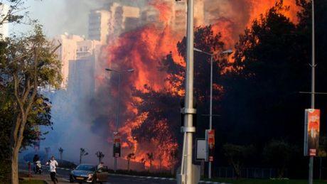 Israel: Chay rung nhu bao lua, 80.000 nguoi so tan khan cap - Anh 1