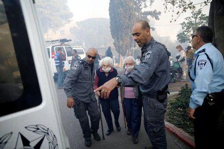Chay rung nghiem trong tai Israel, khoang 50.000 nguoi phai so tan - Anh 7