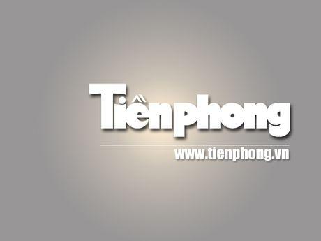 Viet - Nga: Hop tac nang luong van la mui nhon - Anh 1
