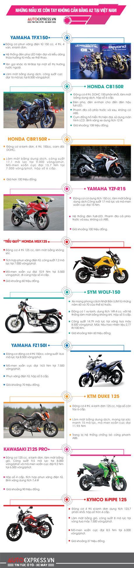 10 lua chon xe con tay khong can bang A2 tai Viet Nam - Anh 1