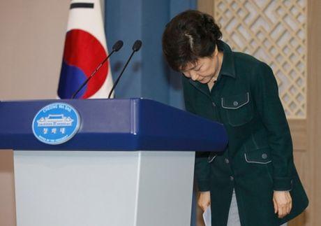 Muc tin nhiem Tong thong Park Geun-hye roi xuong muc ky luc moi - Anh 1