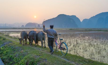 Bao Anh goi y nhung trai nghiem khong the bo qua o Viet Nam - Anh 1