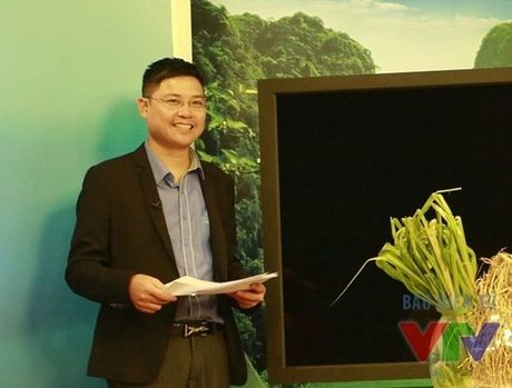 Xon xao chuyen nghi viec cua BTV Van Anh va Diep Anh - Anh 3