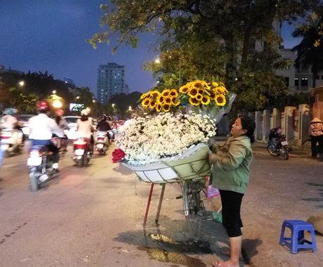 [Anh]: Cuc hoa mi ngap tran tren pho Ha Noi - Anh 11