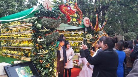 Tung bung ngay hoi trai cay Luc Ngan lan thu nhat nam 2016 - Anh 5