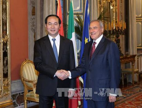 Toan canh: Chu tich nuoc tham chinh thuc Italy va Toa thanh Vatican - Anh 10