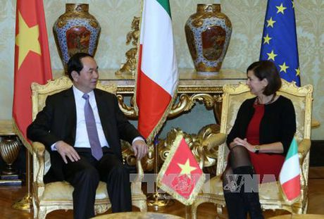 Toan canh: Chu tich nuoc tham chinh thuc Italy va Toa thanh Vatican - Anh 9