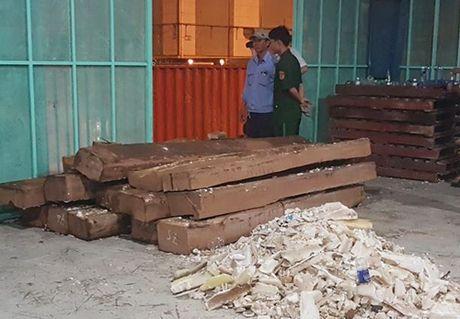 Hon 600kg nga voi giau trong kien go duoc phat hien tai cang Cat Lai - Anh 1