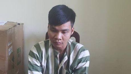 Khoi to doi tuong mua ban, van chuyen 243 kg phao no - Anh 1