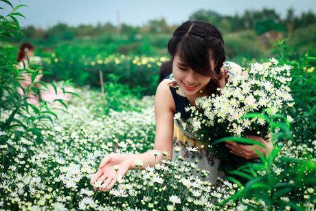 Thieu nu Ha thanh ron rang check-in vuon hoa cuc hoa mi tuyet dep - Anh 3