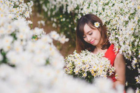 Thieu nu Ha thanh ron rang check-in vuon hoa cuc hoa mi tuyet dep - Anh 4