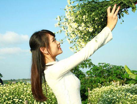 Thieu nu Ha thanh ron rang check-in vuon hoa cuc hoa mi tuyet dep - Anh 5
