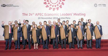 Da Nang voi Tuan le cap cao APEC 2017 - Anh 1