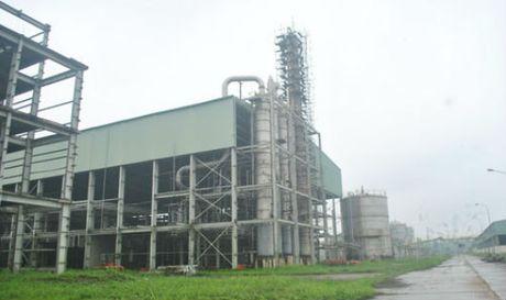 PVN chi dinh thau PVC, du an gan 2.500 ty thanh dong sat vun - Anh 1