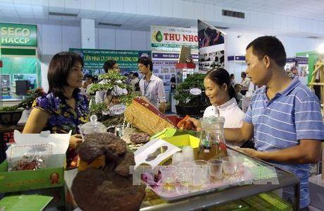 Xuat khau nong lam thuy san co the dat 31 ty USD - Anh 1