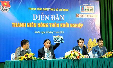 Mach nuoc khoi nghiep cho thanh nien nong thon - Anh 1