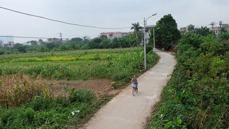 Bi dan phan doi, Ha Noi tam dung du an nghia trang - Anh 1