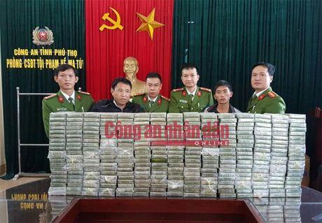 Bat qua tang vu van chuyen trai phep 300 banh heroin - Anh 1